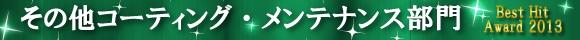 2013年ランキング〔その他コーティング・メンテナンス部門〕