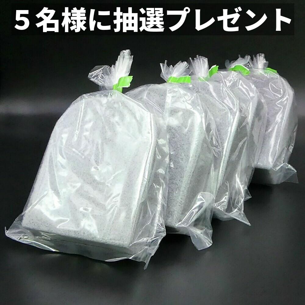 抽選で5名様にこの樹脂・レザークリーナーブラシをプレゼント!