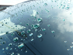 ガラス研磨コンパウンドで油膜を落としてからガラス撥水コーティングを施工しコロコロに撥水された水滴