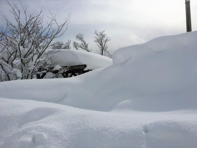 これもいい感じですが、、、じつは用水沿いの休憩スポットの屋根付近まで除雪された雪が積み上がってる光景です