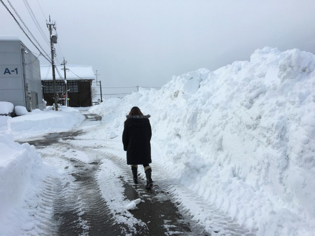 除雪車が繰れば除雪が終わりでなくて、その後多くの部分を手作業で雪かきしなくてはなりません。雪の壁の中を疲れ果てて歩く女子社員