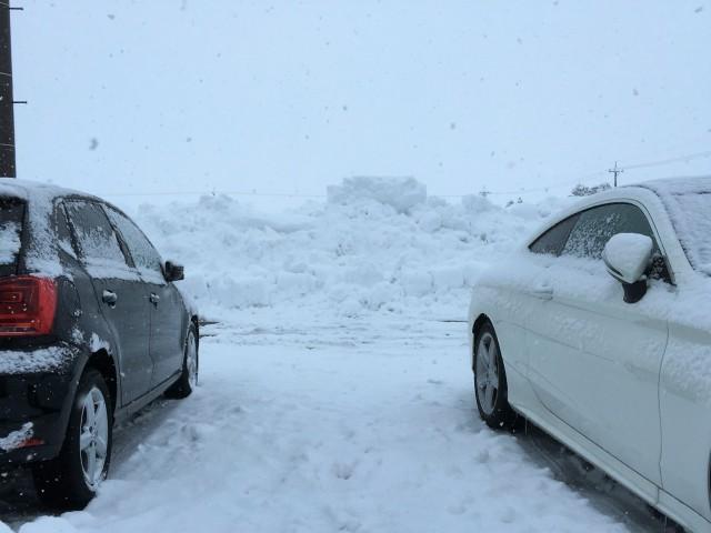そしてまた雪は除雪しても除雪しても降り積もる