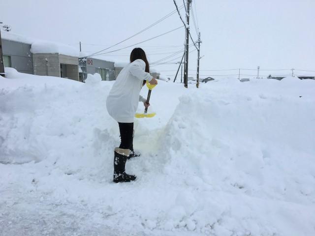 近くの道路だけはサッと除雪してあったので、そこから会社までの通り道を当店の女子社員がスコップで建設中でした