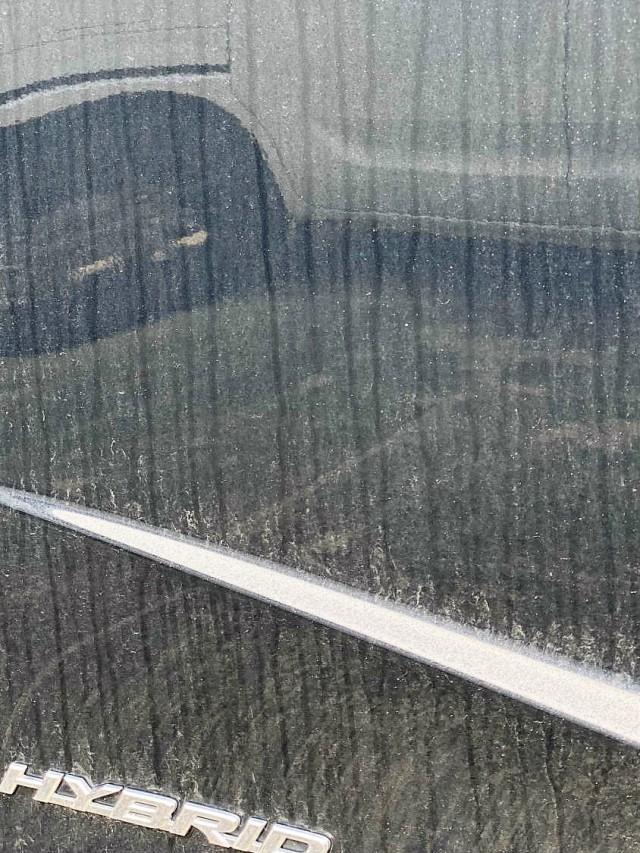 雨ジミ イオンデポジット 水垢 を落としていないレクサスRXのドアはボディ表面のシミにさらに汚れが引っ掛かって汚れの連鎖状態