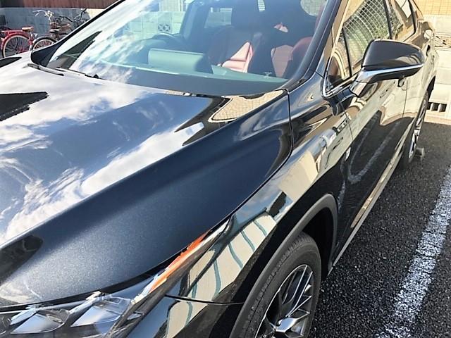くすみ・油分や固着汚れを除去可能なクリーナーコーティング/イージスをレクサス/RXに施工した評価・おすすめ・レビュー・口コミ