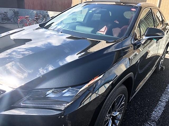 レクサス/RXに油分分解性能も兼ね備えた洗車専用パーフェクトシャンプーを施工した評判・人気・評価・おすすめ・レビュー・口コミ