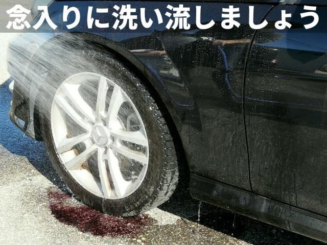 ホイールを装着した状態で鉄粉除去剤を使用した場合は、ブレーキやローター部分を念入りに流水で洗い流すこと