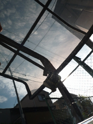 ガラスコーティングの下地処理の必需品!ハイブリッドナノガラス特製コンパウンドを施工されたトヨタ プリウス