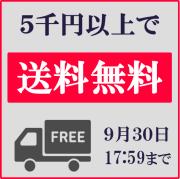 【増税直前】ハイブリッドナノガラスでは9/30まで5千円以上で送料無料!