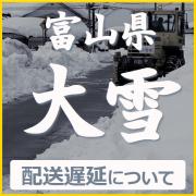 ハイブリッドナノガラス富山県の令和3年豪雪による発送遅延についてのご案内
