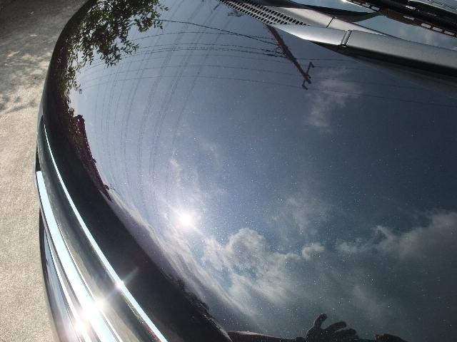 ガラスコーティング剤 車のコーティングトヨタ エルグランド (ミスティックブラック #G30)