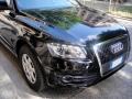 ガラスコーティングのハイブリッドナノガラスゼウス施工Audi アウディ