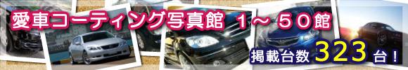 カーコーティング・洗車用品ならハイブリッドナノガラスの商品を愛車に施工したユーザー様から投稿された写真1~50館目までをご紹介!